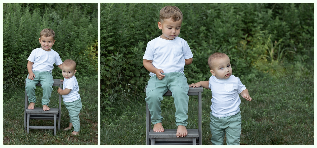 toddler brothers on ladder